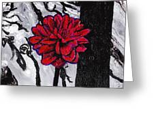Dhalia Greeting Card