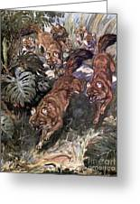 Dhole, Endangered Species Greeting Card