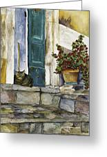 Di Gatto Greeting Card by Barb Pearson