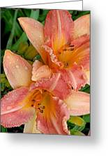 Diamonds And Lilies Watercolor Greeting Card