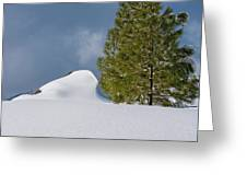 Diamonds In The Snow Greeting Card