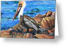 Dick The Pelican Greeting Card