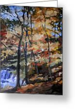 Dick's Creek Falls Greeting Card