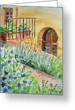 Dievole Vineyard Greeting Card by Judy Swerlick