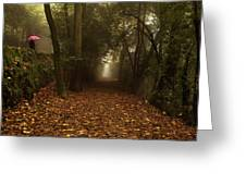 Diferent Paths Greeting Card