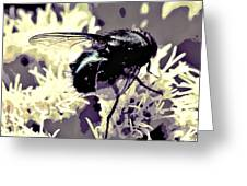 Digital Bottle Fly Greeting Card