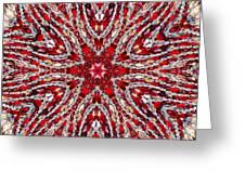 Digital Kaleidoscope Red-white 4 Greeting Card
