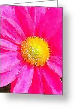 Digital Watercolour Of A Pink Daisy Pollen Flower Greeting Card