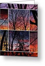 Digital Winter Trees Greeting Card
