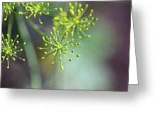 Dill Abstract On Mint Green And Plum Greeting Card