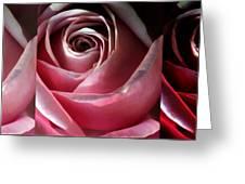 Dimming Rose Greeting Card
