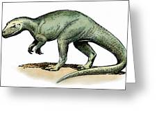 Dinosaur: Allosaurus Greeting Card