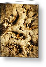 Dinosaurs In A Bone Display Greeting Card