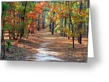 Autumn Scene Dirt Road Greeting Card