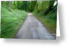 Dirt Path And Surrounding Bush Seen From A Cyclist's Point Of View Greeting Card