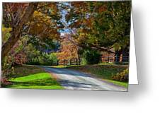 Dirt Road Through Vermont Fall Foliage Greeting Card