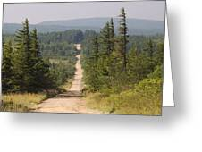 Dirt Road To Dolly Sods Greeting Card