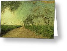 Dirt Road To The Fields Greeting Card