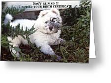 Dirty Dog Birthday Card Greeting Card