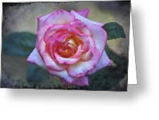 Dirty Pink Rose Greeting Card
