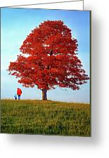 Discovering Autumn Greeting Card