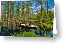 Discovery In A Cypress Swamp Greeting Card