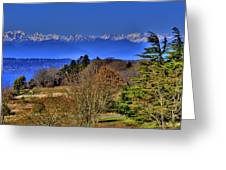 Discovery Park No.2 Greeting Card