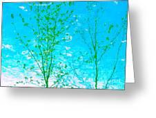 Dispel Illusion Greeting Card