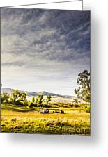 Distant Car Wrecks On Outback Australian Land  Greeting Card