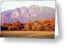 Distant Cattle Grazing Beneath Cascade Mountains 1 Greeting Card