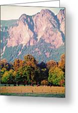 Distant Cattle Grazing Beneath Cascade Mountains 2 Greeting Card