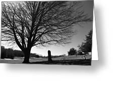Distant Memories Greeting Card