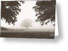 Distant Silence Greeting Card