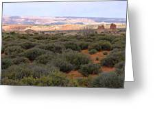 Distant View Greeting Card