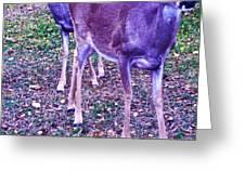 Distrubing Deer Greeting Card