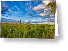 Ditch View  Greeting Card