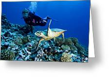 Diver And Green Sea Turtle Chelonia Greeting Card