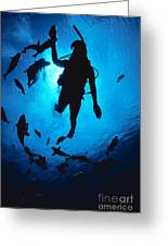 Diver And Reef Fish Greeting Card