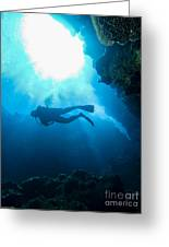 Diver At Pakin Atoll Greeting Card