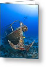 Divers Visit The Pelicano Shipwreck Greeting Card