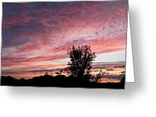 Divine Dawn Greeting Card
