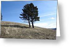 Divine Hill Greeting Card