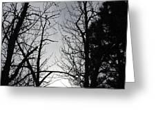 Divinity Light Greeting Card