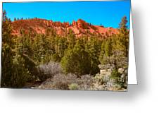 Dixie National Forest Greeting Card