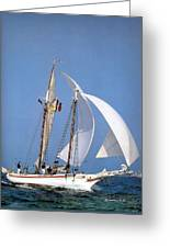 dk tall ships fiddlers green gaff schooner lyr 1973 D K Spinaker Greeting Card