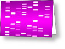 Dna Magenta Greeting Card