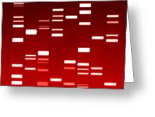 Dna Red Greeting Card