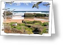 Do-00046 Birdie Beach Greeting Card