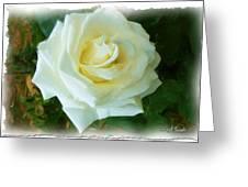 Do-00300 La Rose De Aaraya Greeting Card