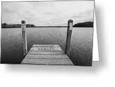 Dock No Diving  Greeting Card